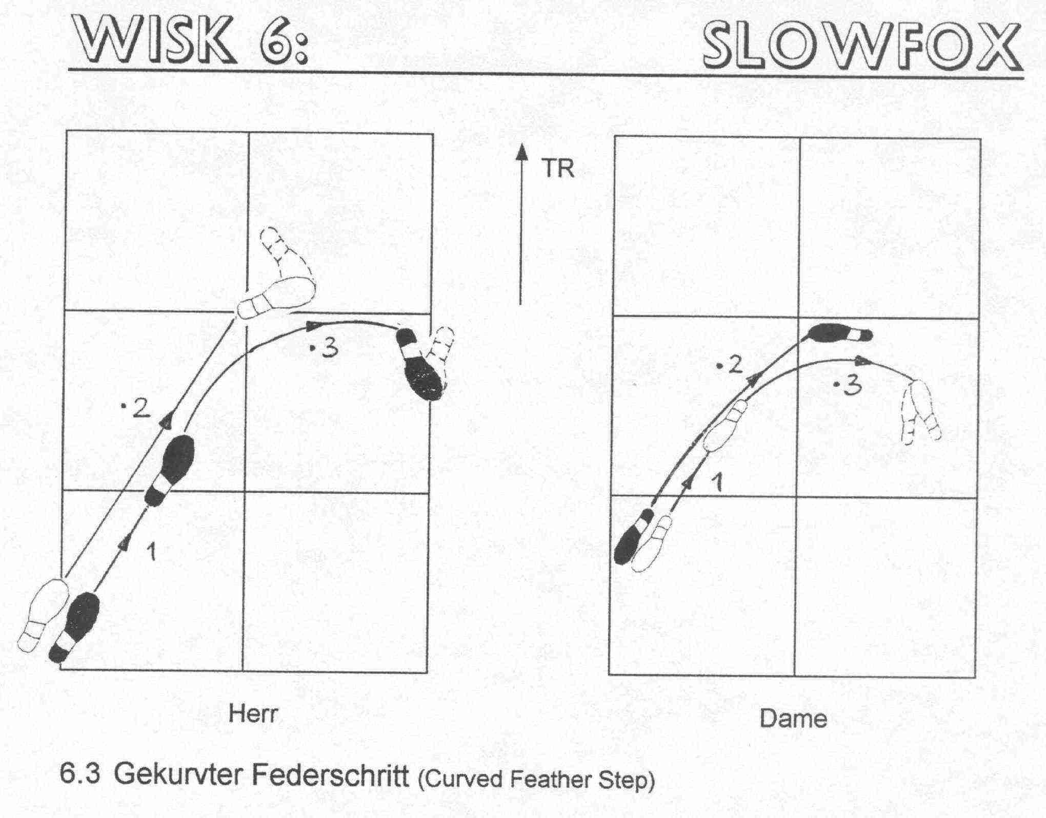 darstellung der grundschritte des slowfox und einfacher